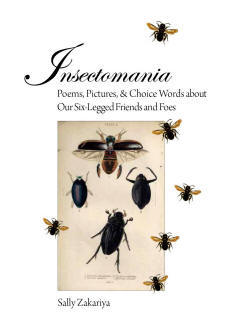 Insectomania